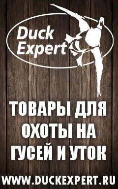 Баннер DuckExpert
