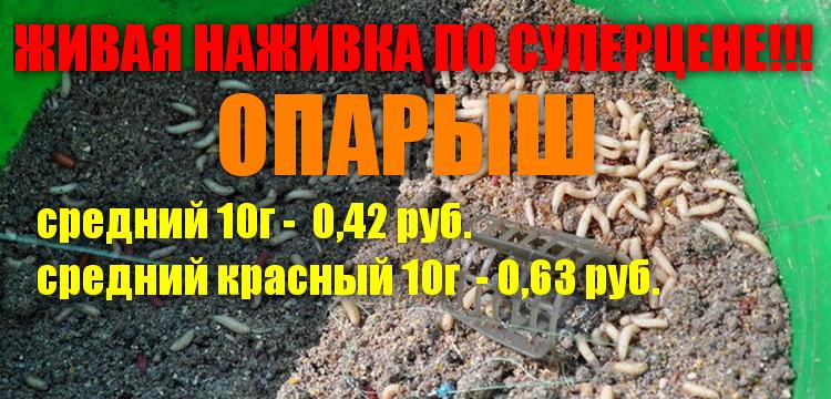 1456466402_vot.jpg